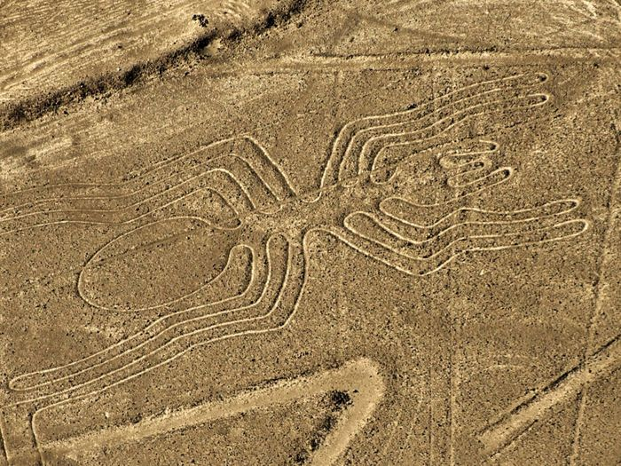 Nazca Lines Archaeological Findings