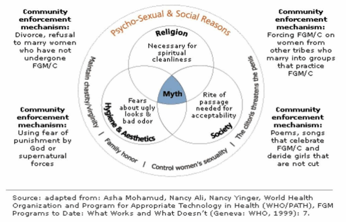 The image of psycho-sexual and social reasons for FGC. It portrays 3 main reasons for FGC: religion (since FGC is perceived as necessary for the attainment of spiritual cleanliness), hygiene and aesthetics (many believe that uncircumcised vulva is not aesthetically pleasing and even unclean) and society (most often FGC is performed for cultural reasons including the rite of passage which allows one to be accepted by her tribal society). Other reasons are also listed. They include the importance to maintain chastity/virginity before marriage, family honor, control of women's sexuality and the superstitional belief that the clitoris threatens the penis. The image also lists main enforcement mechanisms used on women in FGC-practicing communities. They include divorce or refusal to marry women who have not undergone FGM/C, using fear of punishment by God or supernatural forces, and poems, songs that celebrate FGM/C and deride girls that are not cut. ,