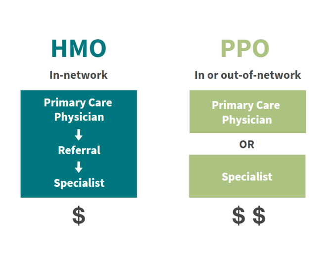two distinct diagraphs which show HMO in network system and PPO out of network system