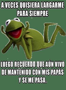 Rana Rene Memes Muppets A Veces Quisiera Luego Se Me Pasa T Shirt