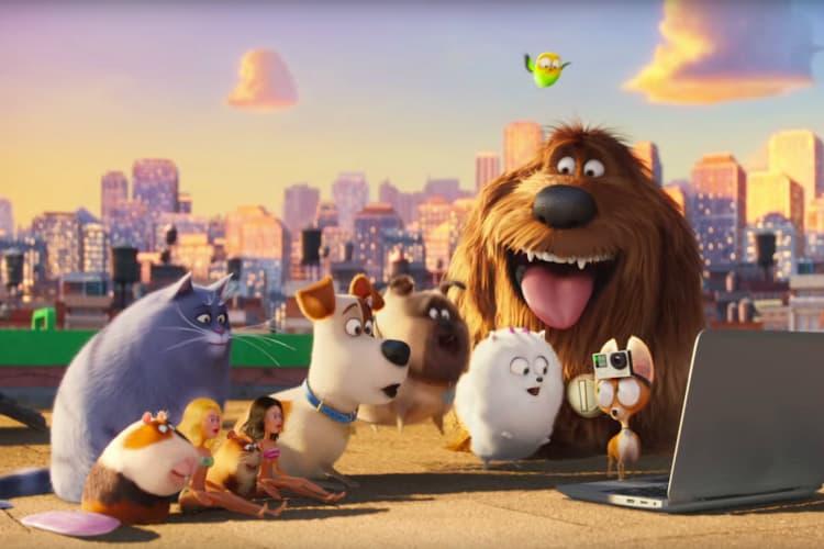 filmes-de-cachorro-4