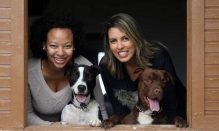 DogHero: Estadão conta como surgiu a DogHero