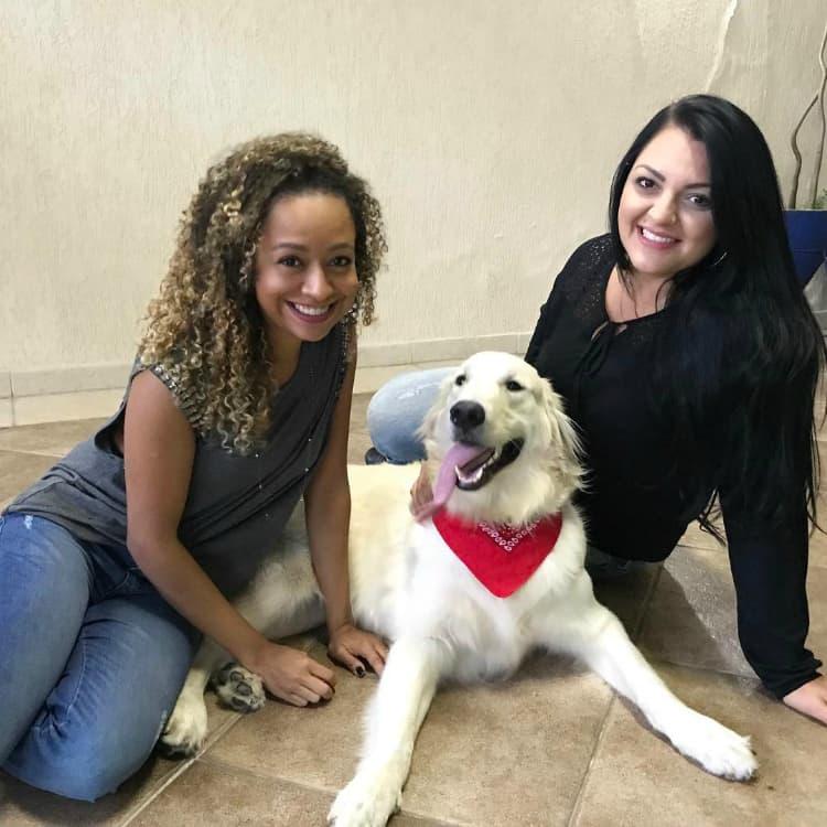 Hóspedes famosos: Ragnar, da atriz Aretha Oliveira, a Pata da Chiquititas - DogHero for dog lovers <3