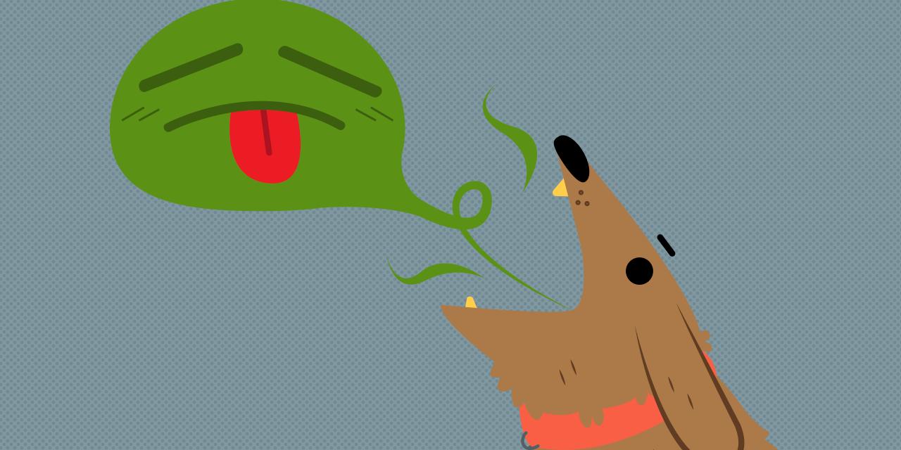 Mi perro tiene mal aliento: ¿qué hago?