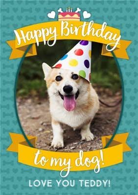 To My Dog Happy Birthday Photo Upload Card Moonpig