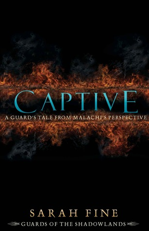 Captive: A Guard's Tale from Malachi's Perspective