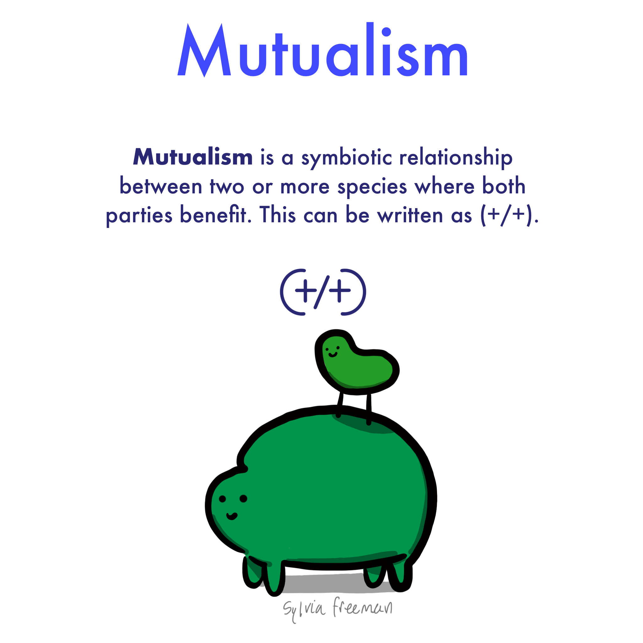 Mutualism Definition Amp Examples