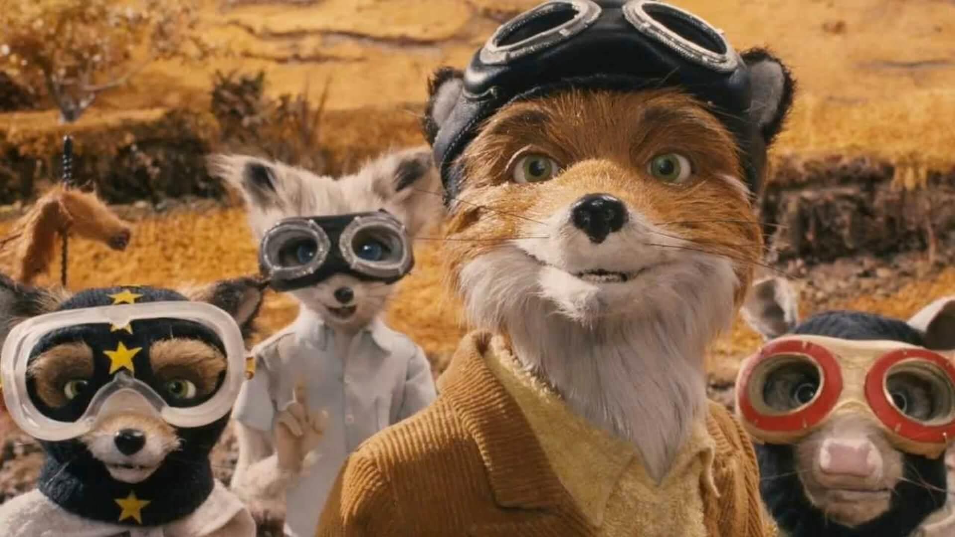 Cinemania Student Critics Fantastic Mr Fox Jacob