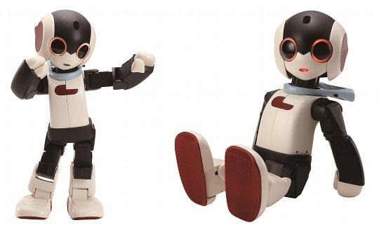 Personal Robo | Photo