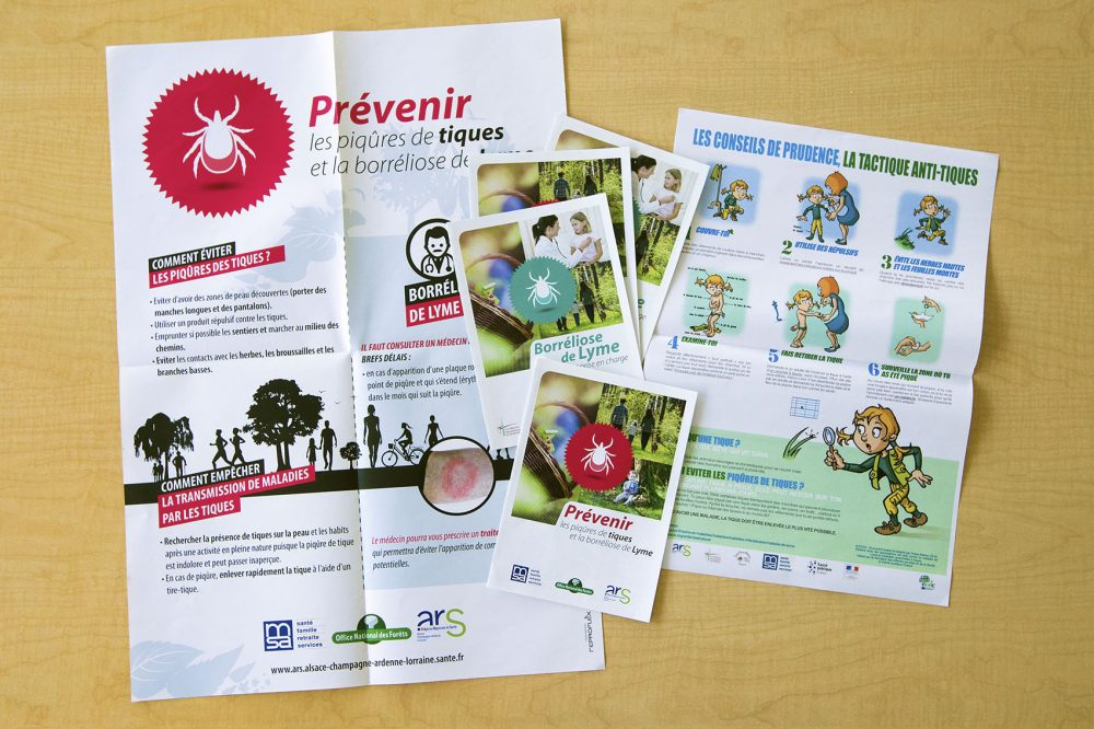 Tick and Lyme disease prevention posters and pamphlets from France. (Jesse Costa/WBUR)