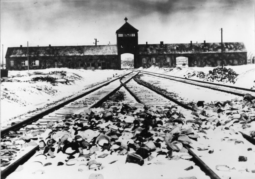 One Long Night' Tells Harrowing History Of Concentration Camps   Here & Now