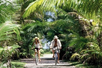 Bora Bora Honeymoon Guide: Know How To Plan A Romantic Getaway