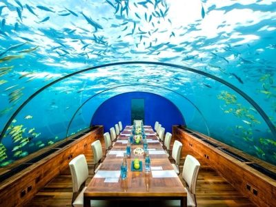 5 Underwater Restaurants In Maldives You Can't Afford To Miss