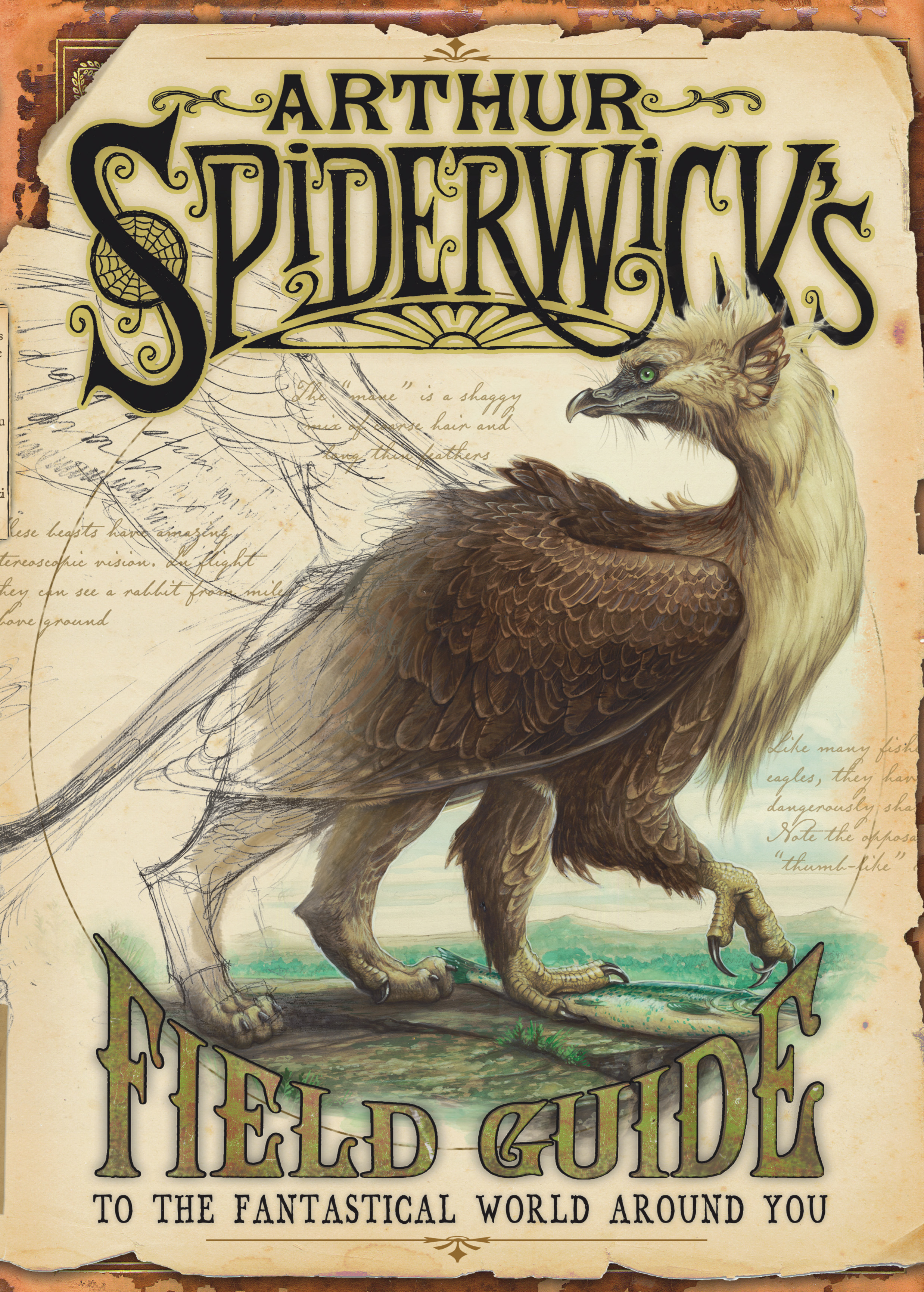 Book Field Spiderwick Chronicles Guide Author