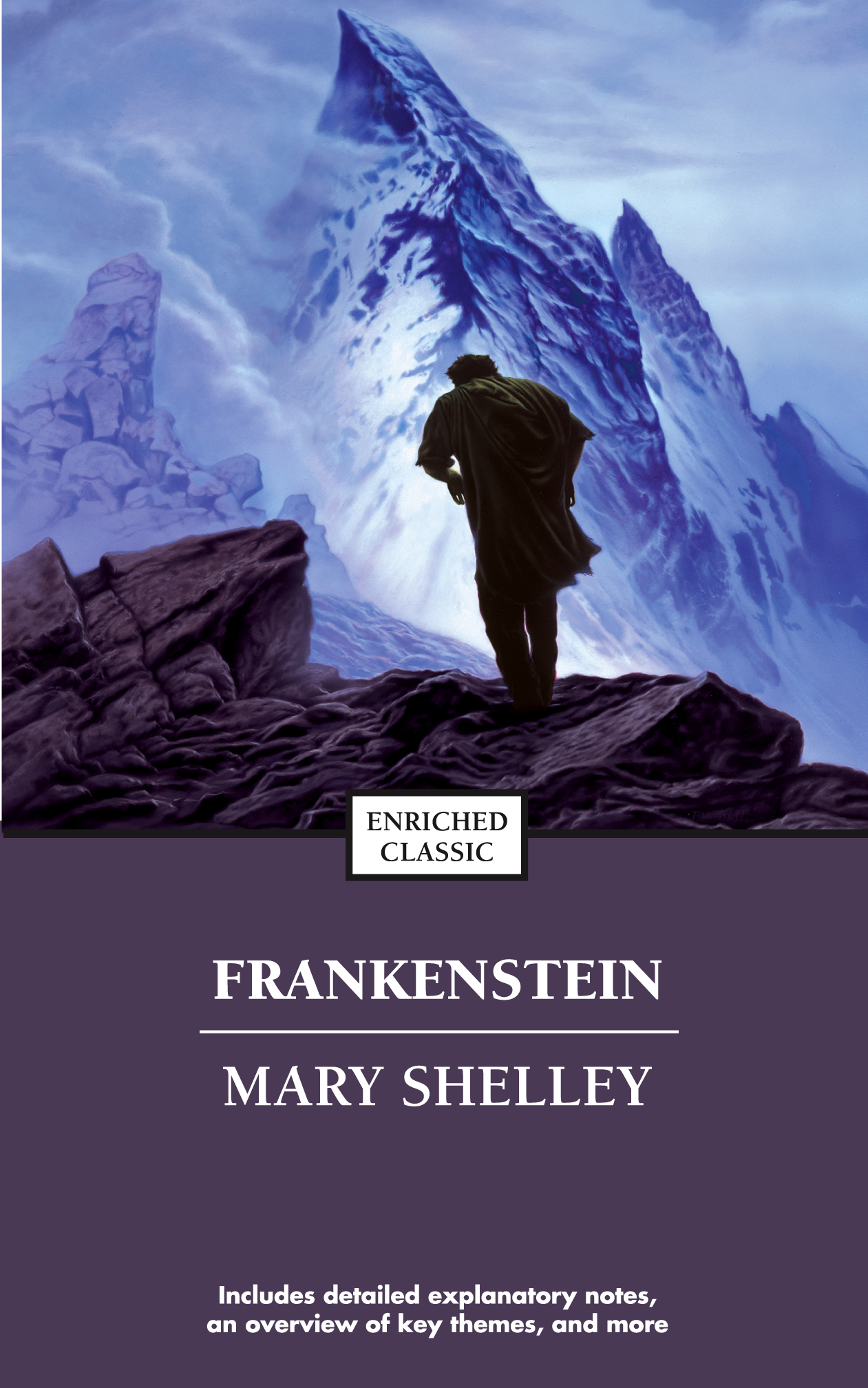 Image result for frankenstein mary shelley book cover