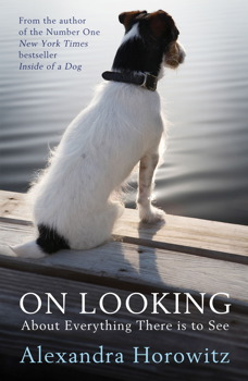 #FlashbackFriday   Two Books On Noticing And Paying Attention: Patricia Ryan Madson's Improv Wisdom And Alexandra Horowitz's On Looking   Lynn Buckler Walsh   The Black Lion Journal   The Black Lion   Black Lion