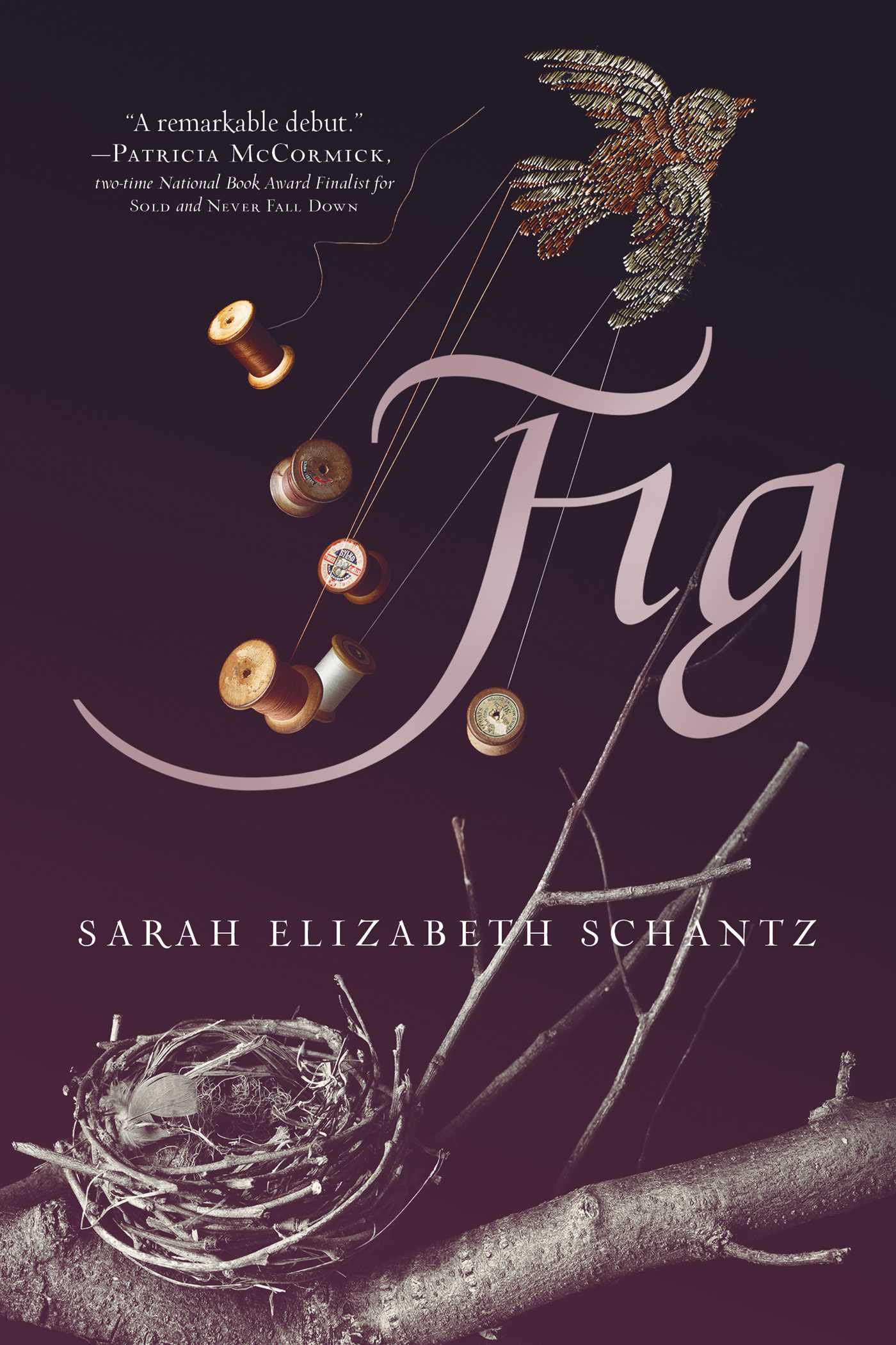 Image result for fig book cover