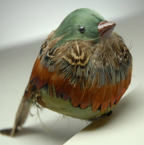 Artificial Birds Chubby Robin With Clip 55in