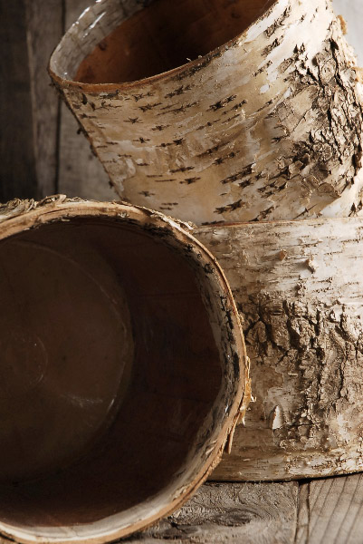 Birch Bark Planter W Plastic Liner 7x6