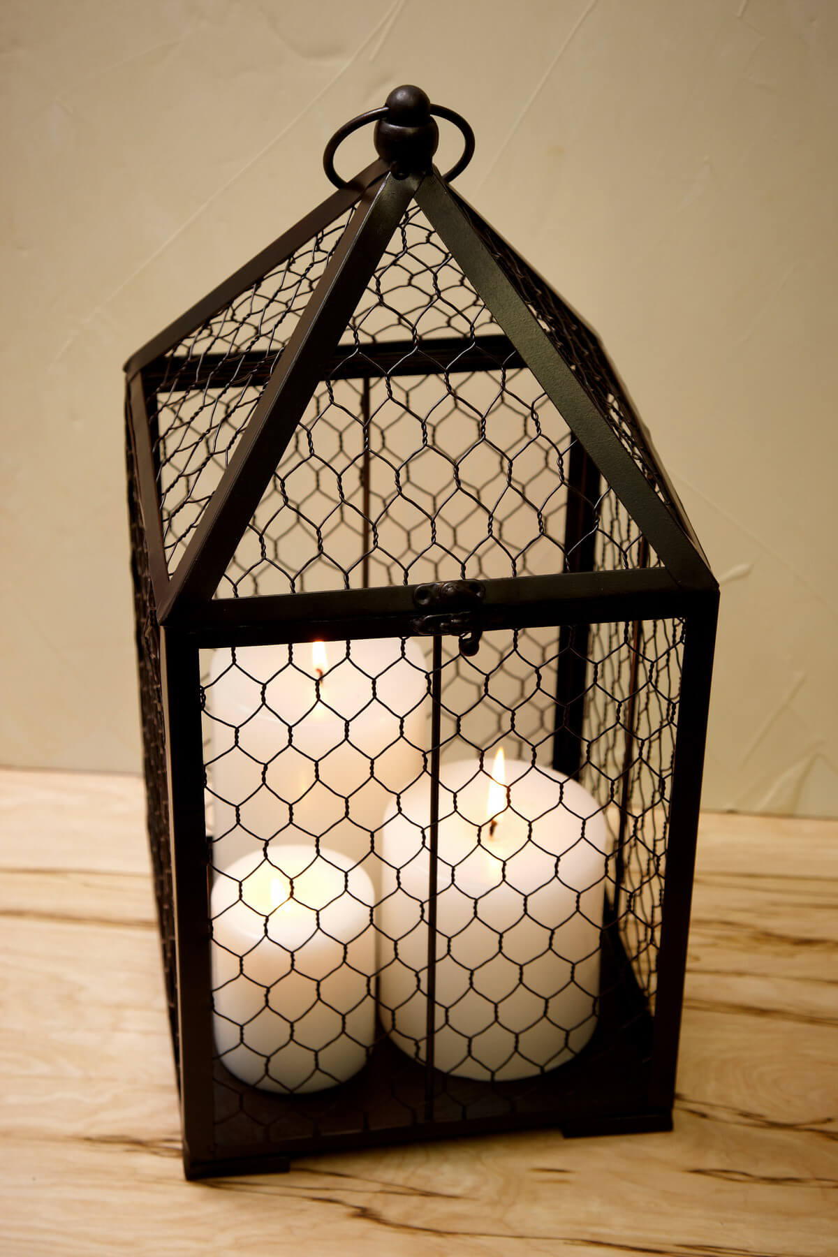 Chicken Wire Topiary Cage 17 75in