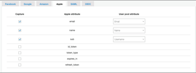 Figure 2: Select checkboxes and user pool attribute