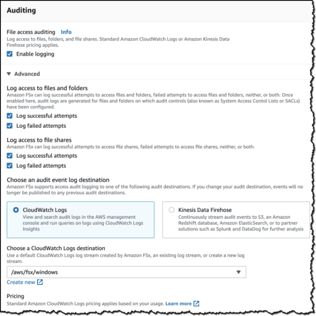 Screenshot of the Auditing options