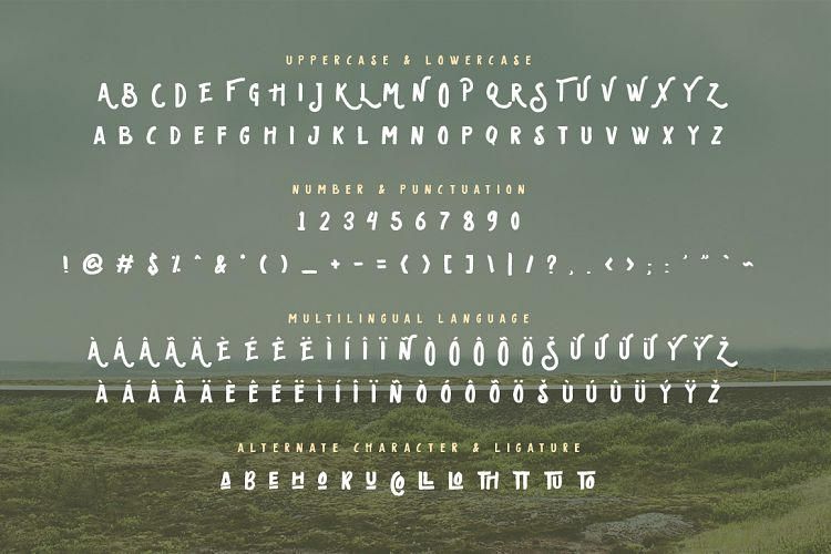 Free Oldventure - Handbrushes Typeface Fontscripts