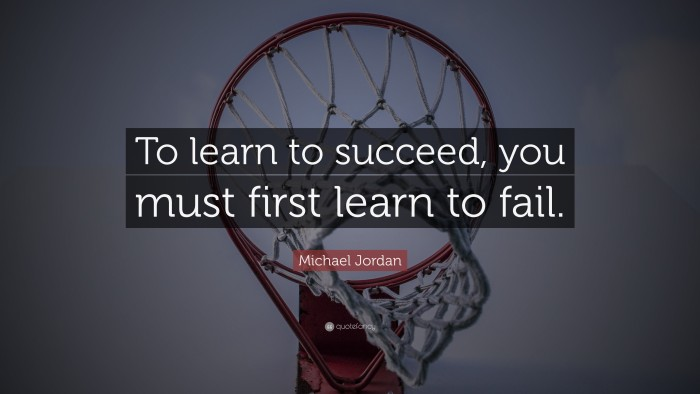 To learn to succeed, you must first learn to fail (Michael Jordan Quote)
