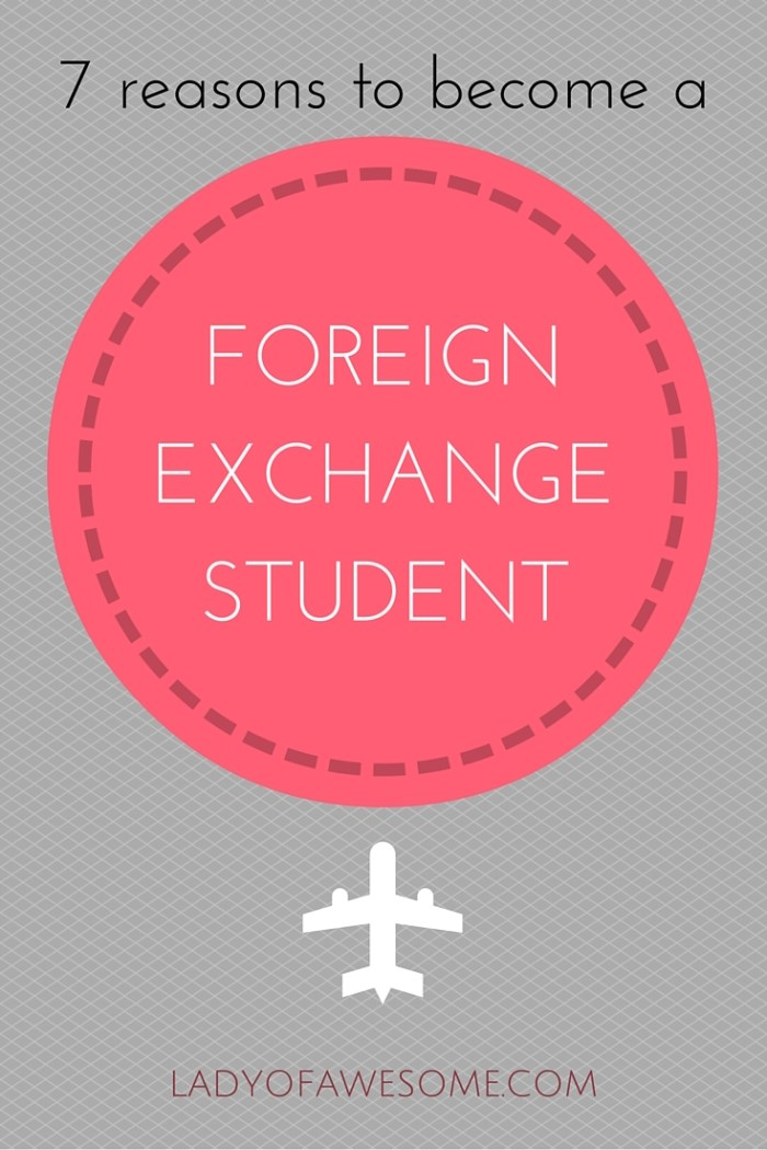 Every student should try studying abroad at least for a semester. It's a great opportunity to travel, learn a new language, new culture, and meet new people! • LadyofAwesome.com
