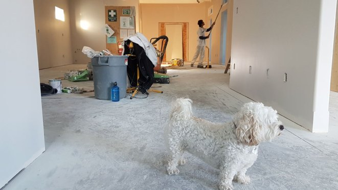 Some Tips For Remodeling Your House