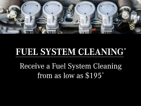 Fuel System Cleaning