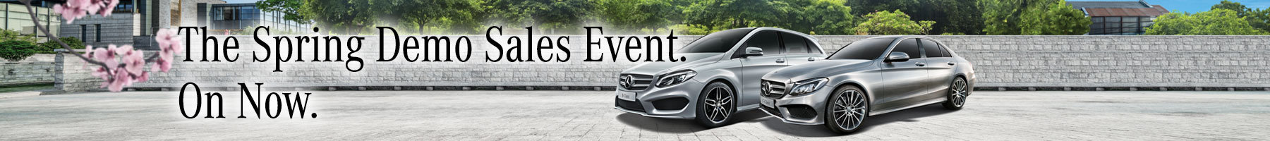 Demo Offers &#8211&#x3B; Mercedes-Benz Custom