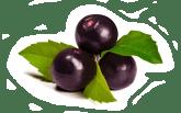 Jeunesse Global Reserve Antioxidant Supplement