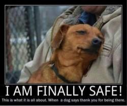 Foster safe