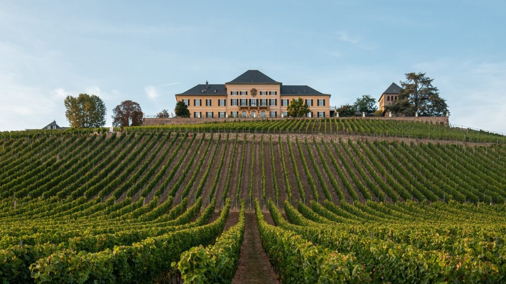 Oldest wineries and vineyards in the world