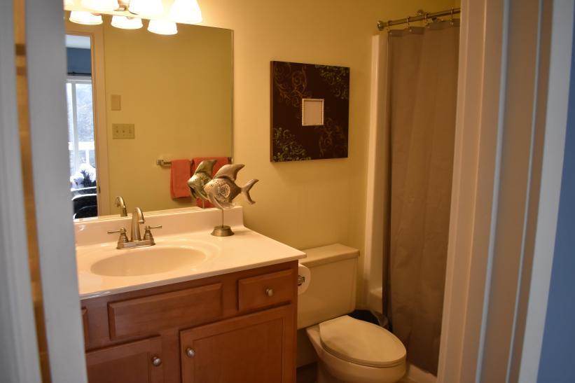 King bedroom full bath - shower and tub