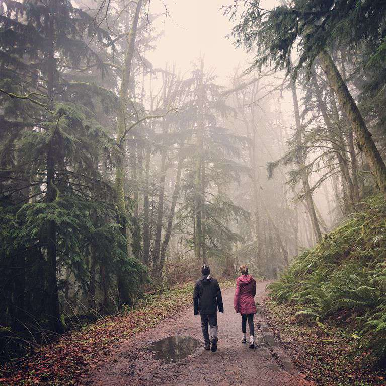Forest Park has hundreds of miles of trails right in PDX. A peaceful sanctuary.