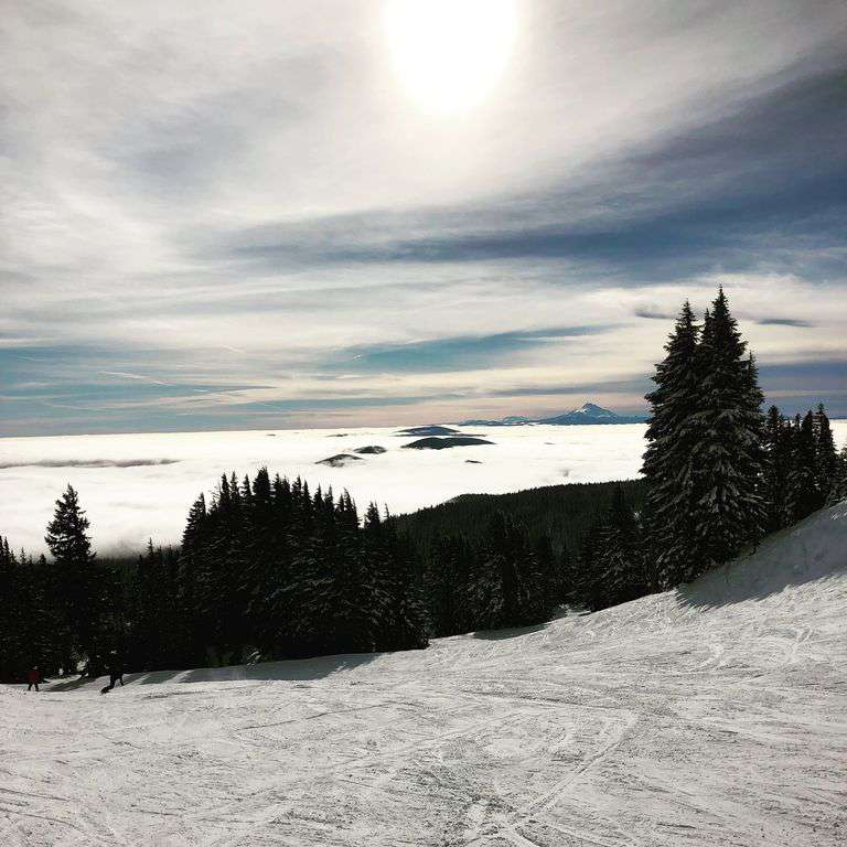 If you enjoy skiing Meadows, Timberline, Ski Bowl & Coopers Spur are all fun.