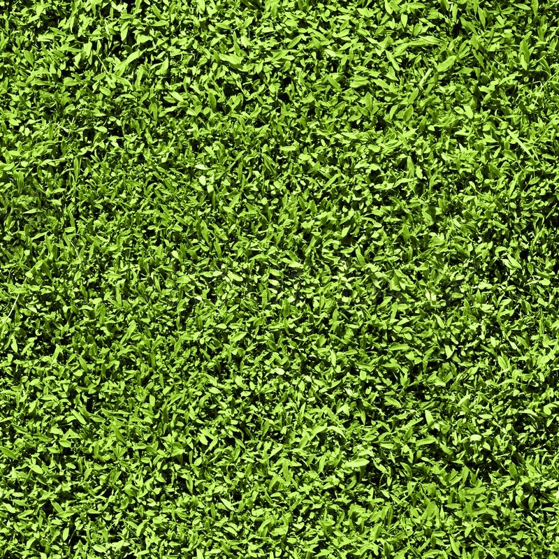 Image Result For Indoor Outdoor Carpet Suppliers