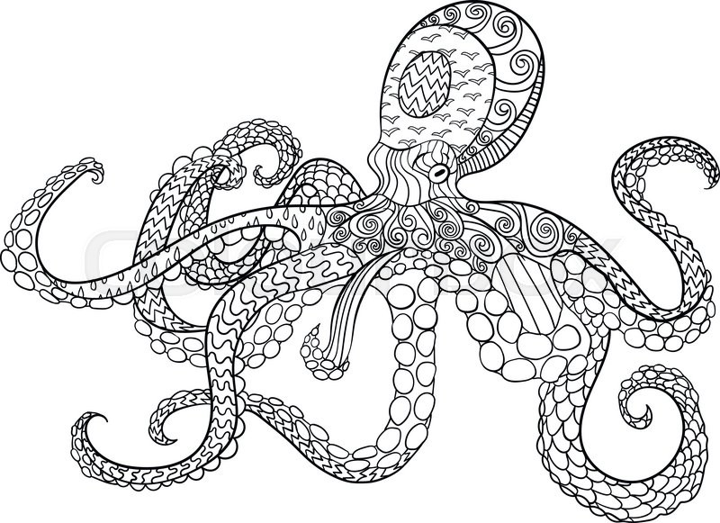 Octopus With High Details Adult Stock Vector