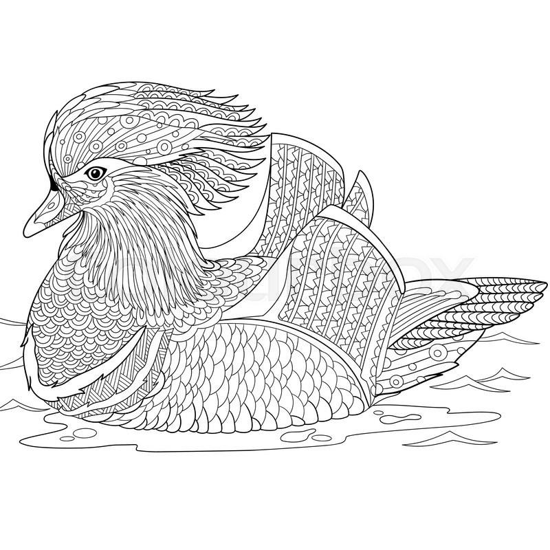Zentangle Stylized Cartoon Mandarin Duck Isolated On