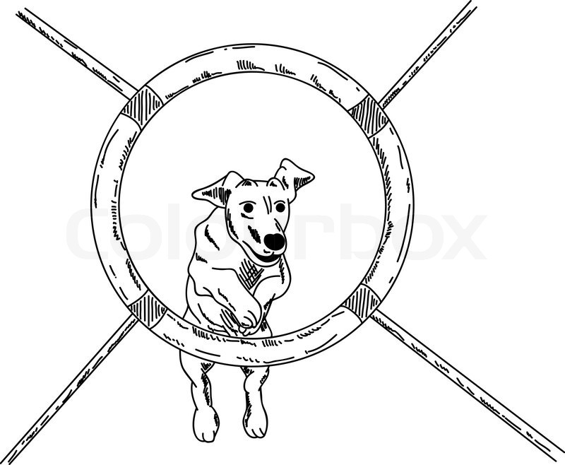 Vector Dog Agility Isolated On Background Stock