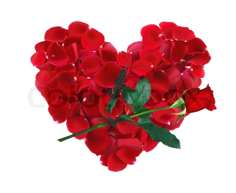 Beautiful Heart Of Red Rose Petals And Rose Flower