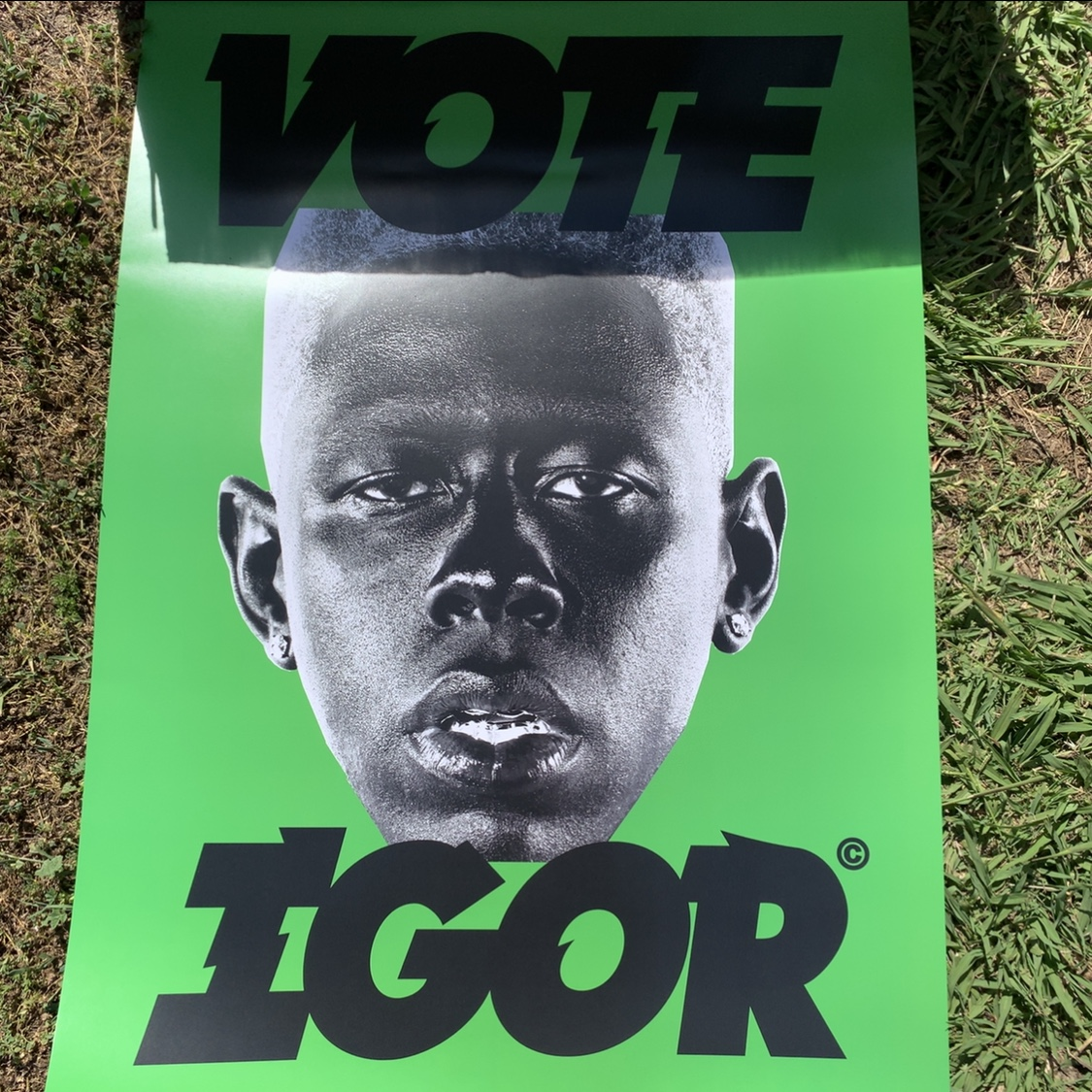 vote igor green poster selling pink igor tee in