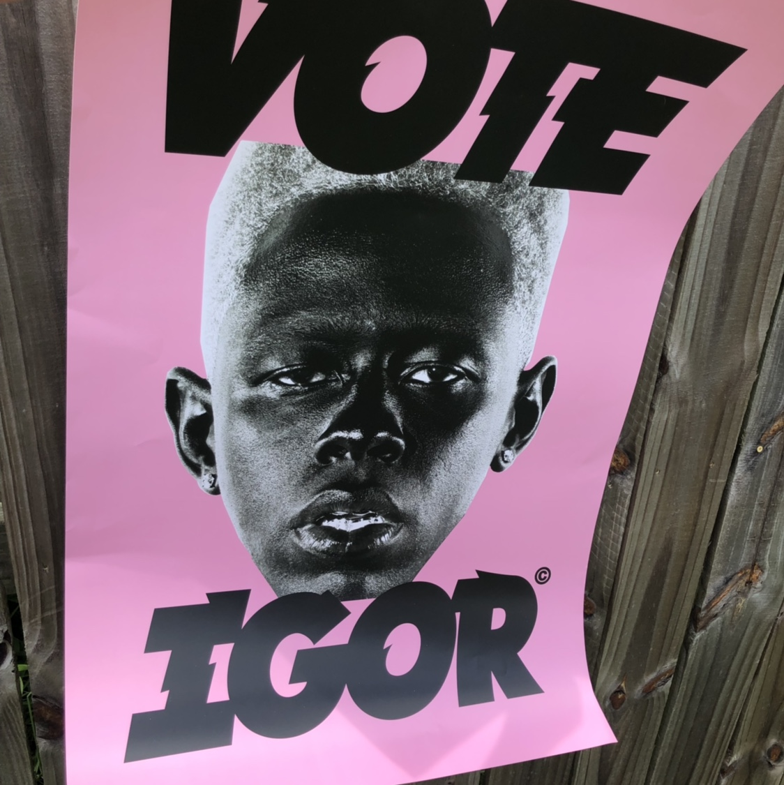 authentic golf wang igor poster only a lil bit