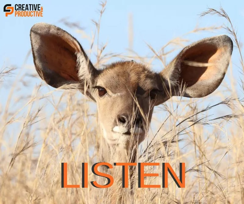 Music Conferences - Make sure you keep your ears open