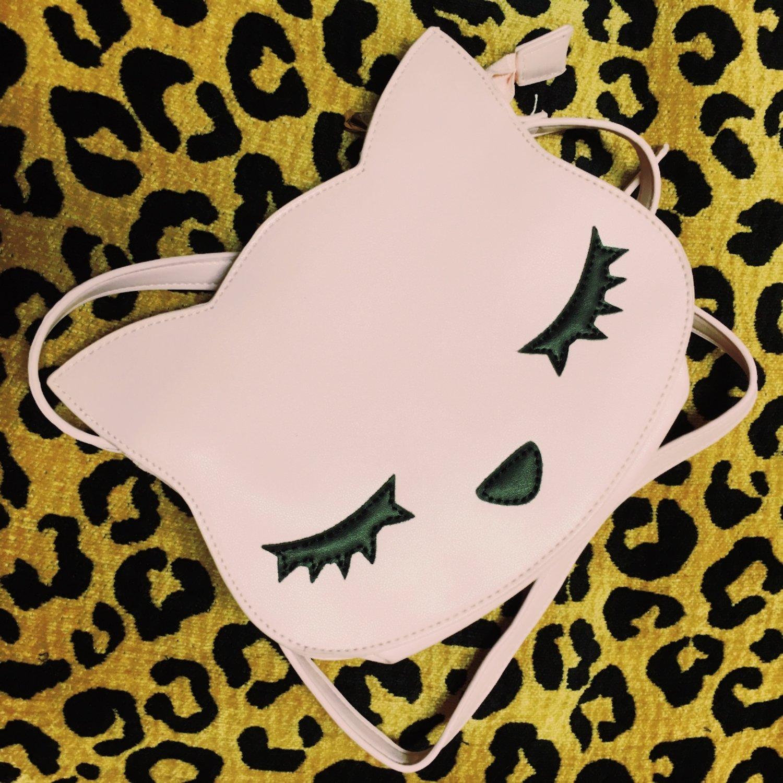 Sleeping Kitty Bag