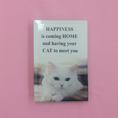 Happiness Is Coming Home and Having Your Cat to Greet You - Mini Sign