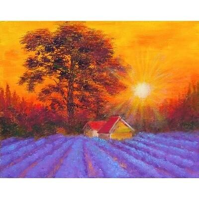 Sunset Lavender Farm -- Leanna Leitzke