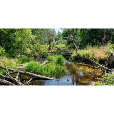 Bear Creek Panorama -- Larey and Phyllis McDaniel